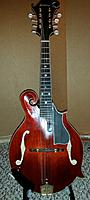 Click image for larger version.  Name:with pickguard.jpg Views:194 Size:122.7 KB ID:129486