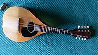 Click image for larger version.  Name:Copy of Full mandolin.jpg Views:297 Size:527.4 KB ID:146584