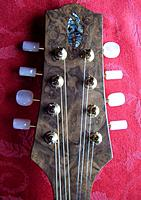 Click image for larger version.  Name:headstock1_.jpg Views:130 Size:63.8 KB ID:90172