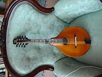 Name:  new snakehead mandolin 001.JPG Views: 379 Size:  7.7 KB