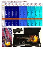 Click image for larger version.  Name:Tessiture_Fender_FM60E 18frets_35-35,8 cm scale-page-001.jpg Views:33 Size:858.3 KB ID:192806