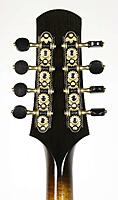 Click image for larger version.  Name:Hamlett - Headstock Back.jpeg Views:166 Size:101.4 KB ID:195480
