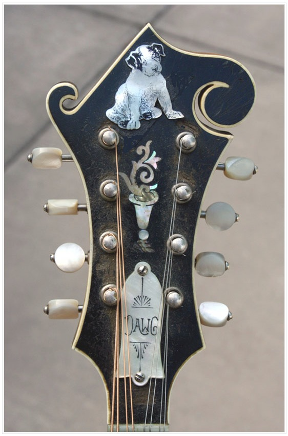 Name:  FireShot Capture 161 - Mandolin – Page 6 – The Fiddle and Cr_ - https___fiddleandcreel.wordpress.jpg Views: 502 Size:  97.4 KB