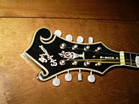 Click image for larger version.  Name:Epiphone truss rod cover.JPG Views:1120 Size:68.4 KB ID:99625