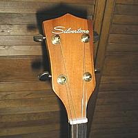 Click image for larger version.  Name:Silvertone tenorhead.jpg Views:159 Size:31.3 KB ID:142970
