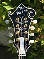 Click image for larger version.  Name:Fern with MOP Truss Rod Cover..JPG Views:51 Size:55.9 KB ID:154200