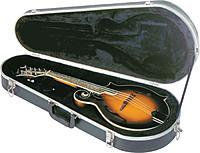 Click image for larger version.  Name:Gator mandolin case (2).jpg Views:61 Size:50.6 KB ID:161438
