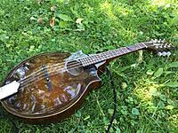 Click image for larger version.  Name:morris mandolin 5.jpg Views:58 Size:932.4 KB ID:186926