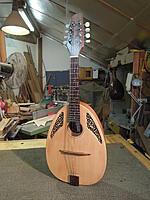 Click image for larger version.  Name:yaron naor mandolin front.jpg Views:40 Size:973.7 KB ID:191326