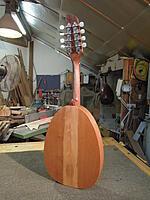Click image for larger version.  Name:yaron naor mandolin back.jpg Views:35 Size:990.1 KB ID:191327