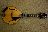 Click image for larger version.  Name:Collings MT resized 121619.jpg Views:21 Size:198.0 KB ID:182014
