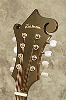 Click image for larger version.  Name:md-315_headstock_web.jpg Views:72 Size:170.6 KB ID:130057