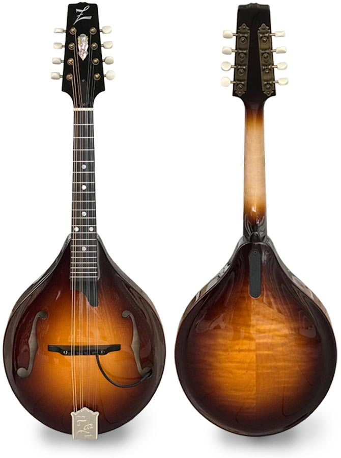 "ZETA Announces Launch of the ""Stage"" Model Mandolin Line"