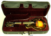 Click image for larger version.  Name:Eastman-815v-mandolin-ss-case-1.png Views:25 Size:2.44 MB ID:184240