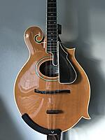 Click image for larger version.  Name:Octave Body.jpg Views:26 Size:537.7 KB ID:186819