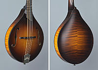 Click image for larger version.  Name:Collings%2520MT%2520Torrefied%2520Sitka%2520Spruce%2520A-Style%2520Mandolin%2520-%2520SN-A4143%2.jpg Views:53 Size:127.4 KB ID:177537