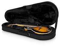 Click image for larger version.  Name:GL Mandolin case.jpg Views:47 Size:60.2 KB ID:194176
