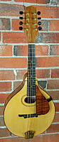 Click image for larger version.  Name:Peter+Coombe+Mandolin.jpg Views:22 Size:93.6 KB ID:172678