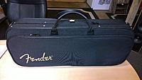 Click image for larger version.  Name:Fender Mando-strat case closed.jpg Views:331 Size:83.9 KB ID:114681
