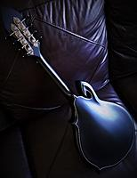 Click image for larger version.  Name:Stealth Full Back.jpg Views:450 Size:488.5 KB ID:160885