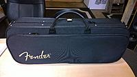 Click image for larger version.  Name:Fender Mando-strat case closed.jpg Views:329 Size:83.9 KB ID:114681