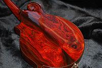 Click image for larger version.  Name:Elkhorn Cocobolo Mandolin back & neck.jpg Views:448 Size:297.7 KB ID:100480