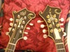 Philphool's Avatar