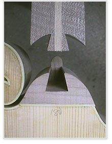 Dovetail prior to insertion - courtesy of Don MacRostie at Red Diamond Mandolins