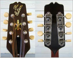 Snakehead front and back, same instrument