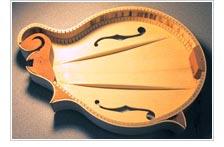 Tone bars - image courtesy of Harlan Mandolins