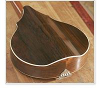 Vega cylinder-back mandolin