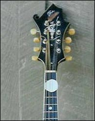 Bill Monroe's original headstock. Photo credit Frank Ray and Mandolin Archive.