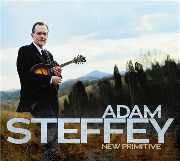 Adam Steffey - New Primitive