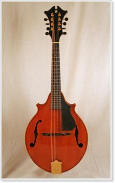 Campanella Strings Mandolin
