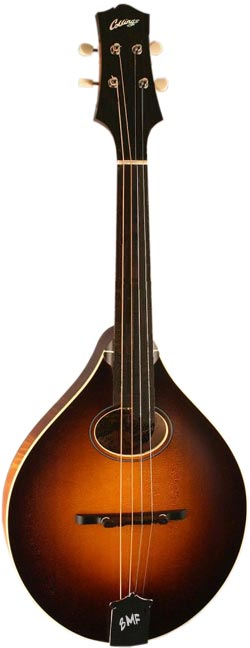 Collings Fretless Bass Mandolin