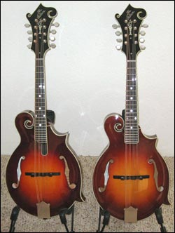 Gibson OAI and The Mandolin Store Exclusive FGCMS Model Mandolin