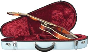 Guardian Professional Mandolin Fiberglass Case for Mandolin. Click for larger image.
