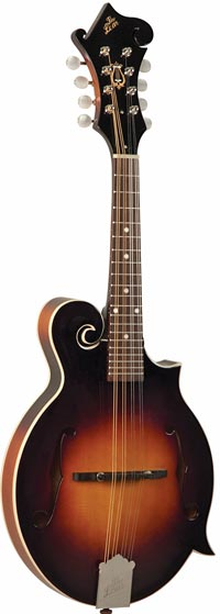 The Loar Grassroots Series LM-370-VSM