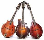 Fifth Annual Midwest Mandolin Festival