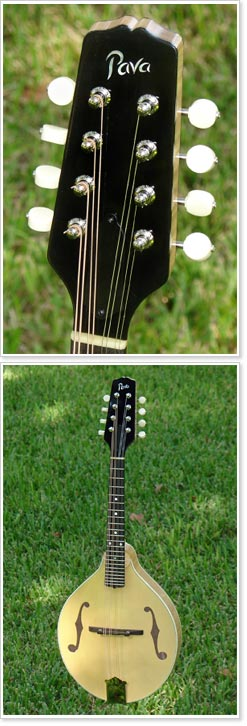 The Pava Mandolin
