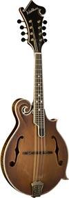 M118SW F style mandolin