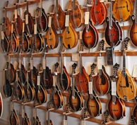 A few of the 100+ mandolins carried by The Acoustic Music Company. Click to enlarge.