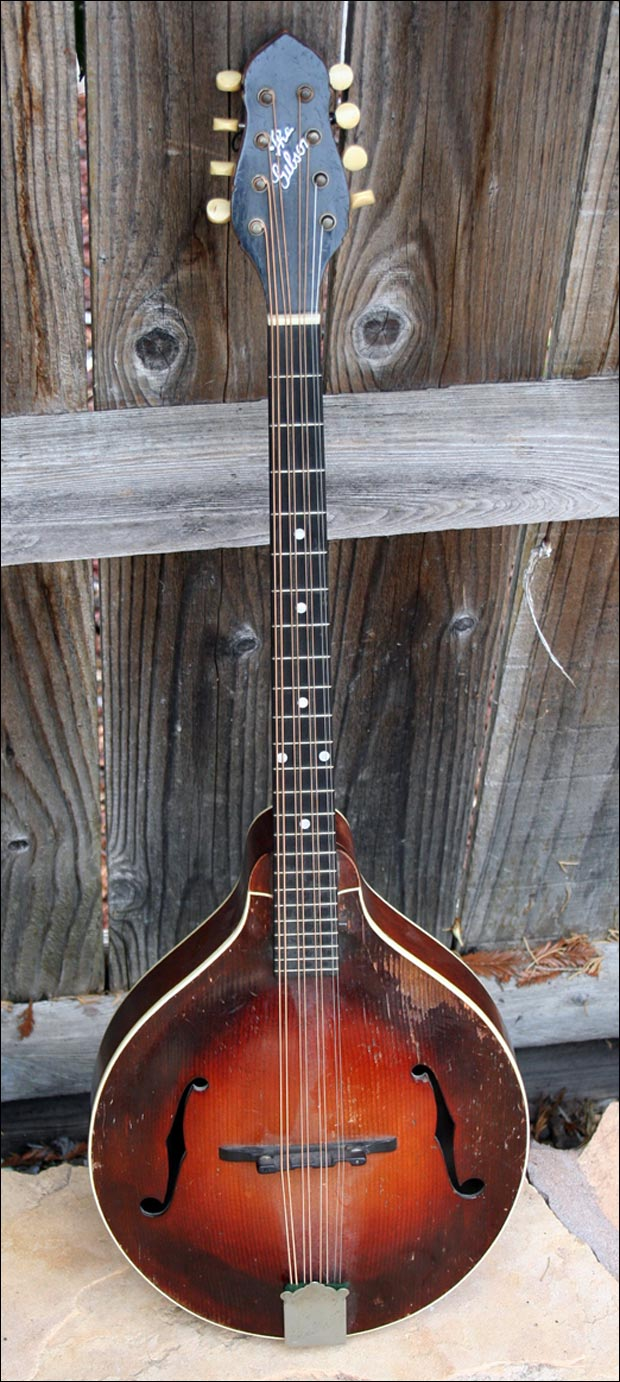 1924 Gibson TL-4 8-string Tenor Lute