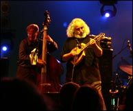 Click to enlarge. David Grisman Quintet in full swing at Wakarusa. Photo by Bill Graham